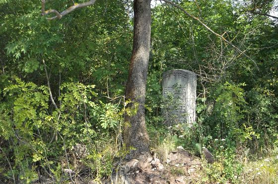 nagrobek_na_zniszczonym_cmentarzu__ydowskim_w_Buczaczu.JPG